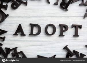 Adjust Accept Adopt image 2.jpg